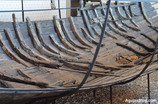 The ships were longships, trading ships, warships and fishing vessels. Their sizes varied carrying crews of 5-6 to 30. Top speeds ranged from 8.5 to 20 knots.