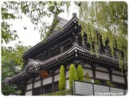 Tokyo - Shrine