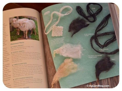 Fleece & Fiber Sourcebook -Sample