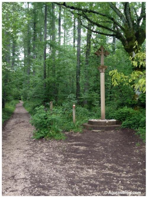 Sorginaritzaga Forest