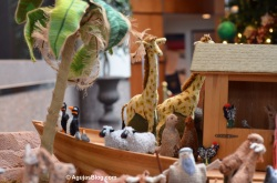 Bush Library - Noah's Ark 3