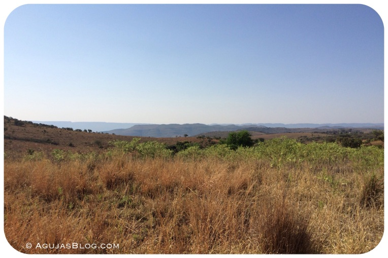 Cradle of Humankind Landscape