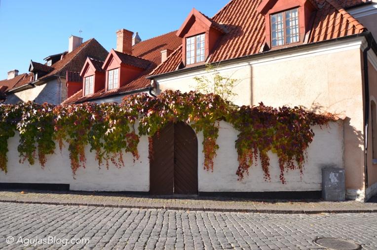 Fall in Visby - 11 Hästgatan