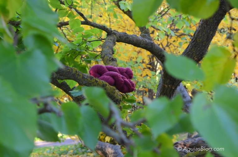 Botanical Gardens - Yllet Yarn