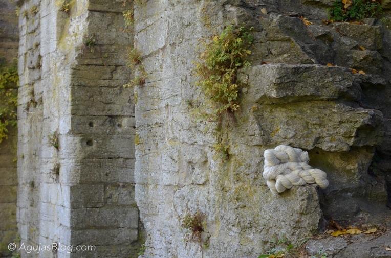 Botanical Gardens - Undyed Wool 1