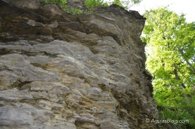 Rock Formation at Cascadilla Gorge